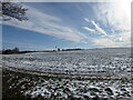 TM2350 : Snow, field and sky by Chris Holifield