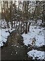 TF0820 : Frozen watercourse by Bob Harvey