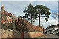 SX9063 : Hennapyn Road, Torquay by Derek Harper