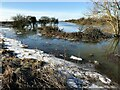 TF3902 : Frozen at the edge - The Nene Washes by Richard Humphrey