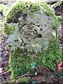 SU5643 : Old Boundary Marker inside the northern boundary of College Wood by S Bell