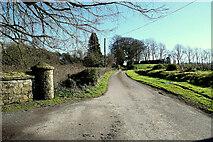 H4851 : Shantonagh Road by Kenneth  Allen