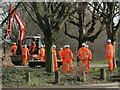 TQ2181 : Digger and hi-viz workers, Old Oak Common by David Hawgood