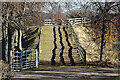 NJ2642 : Wiggly Stripes by Anne Burgess