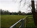 TG3033 : Horse Field by David Pashley