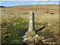 SX2474 : Old Boundary Marker between Langstone Down and Kilmar Tor by P G Moore