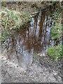 TF0820 : Peaty waters by Bob Harvey