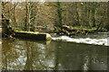 SX7863 : Weir, Staverton by Derek Harper
