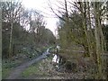 SJ9594 : Trans Pennine Trail at Swain's Valley by Gerald England