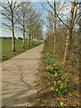 SE2039 : Path to Rawdon Littlemoor primary school  by Stephen Craven