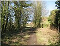 SD2879 : Gill Banks, The Cumbria Way Alternative Route by Adrian Taylor