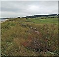NO4002 : Anti-tank blocks, Largo Bay, Fife by Claire Pegrum