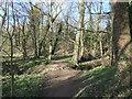 SE3622 : Riverside path, Newland by Christine Johnstone