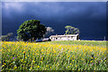 NY8441 : Low Cornriggs in 1987 by Trevor Littlewood