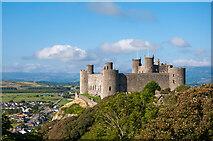 SH5831 : Harlech Castle by Stuart Wilding