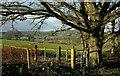 SX8870 : View towards the Teign by Derek Harper