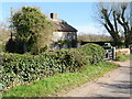 TG3431 : Dwelling beside Mill Common Road by David Pashley