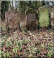SO7876 : Old gravestones at Dowles by Mat Fascione