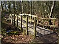 SK2679 : Footbridge in woodland at Longshaw by Graham Hogg