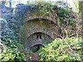 ST1227 : Disused lime kiln, Halse by Marika Reinholds
