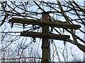 SJ9594 : Telegraph pole by Gerald England