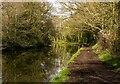 SJ6587 : Bridgewater Canal by Peter McDermott