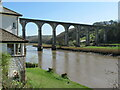 SX4368 : Calstock viaduct from Lower Kelly by Roy Hughes
