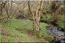 NH5857 : Crossing the stepping stones, Drummondreach Wood by Julian Paren