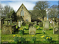 NS3321 : Daffodils bloom at Ayr's Auld Kirk by Mary and Angus Hogg