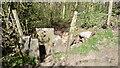 SE2117 : Stile into Whitley Wood by Mick Garratt