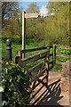 SX9063 : Torbay-Totnes Trail at Old Mill Road by Derek Harper