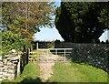 SD2782 : The Cumbria Way near Osmotherley Church by Adrian Taylor