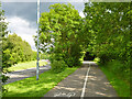 TQ7763 : Cycle track by North Dane Way by Robin Webster