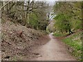 SO8271 : Path at the Leapgate Country Park by Mat Fascione