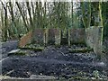 SE2037 : Ruined building in Calverley Wood by Stephen Craven