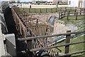 TF2121 : Pipe bridge and screen by Bob Harvey