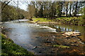SO7460 : The River Teme by Philip Halling