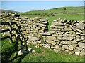 SD2882 : Step stile over dry stone wall by Adrian Taylor