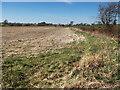 NS7643 : Airstrip near Couplaw Farm, Stonehouse by wrobison