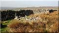 NY9223 : Ruined wall by Mick Garratt