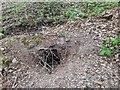 TF0820 : A disused burrow by Bob Harvey