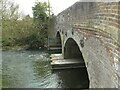 TM1678 : River Waveney at Billingford Bridge by Adrian S Pye