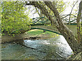 TM2885 : River Waveney passing beneath Homersfield Bridge by Adrian S Pye
