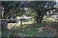 NH5354 : Graveyard entrance by Richard Dorrell