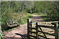 SO3216 : Start of path into Caer Wood and on to Skirrid Fawr by M J Roscoe