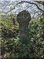 SX0867 : Old Wayside Cross beside the minor road Callybarrett Farm by L Nott