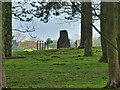 SJ7581 : A View of the Airborne Forces Memorial through Saddleback Wood by David Dixon