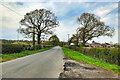 SJ7780 : Mobberley, Broad Oak Lane by David Dixon