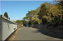 SX9264 : Middle Warberry Road by Derek Harper