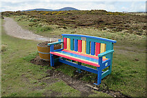 NJ4968 : Colourful Bench by Anne Burgess